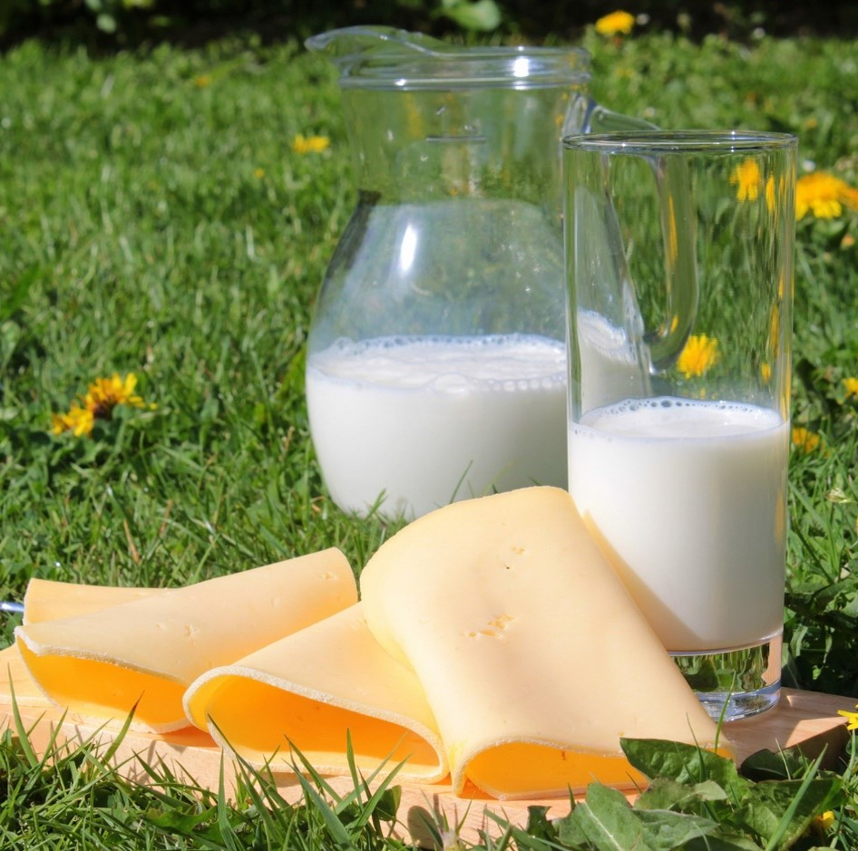 Dairy products ID